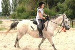 stage-equitation