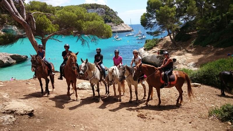 colo telligo cheval 2016