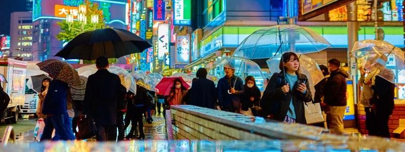 telligo colonies japon