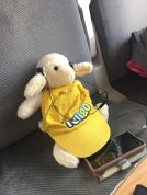 Moumoutte écoute de la musique dans le train
